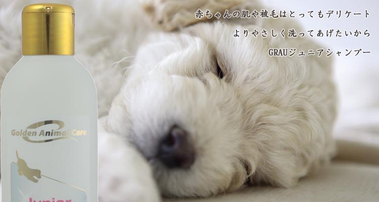 全種仔犬・子猫および皮膚が特にデリケートな成犬・成猫